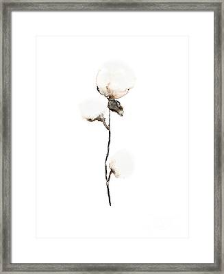 Natural Cotton Fine Art Print Framed Print