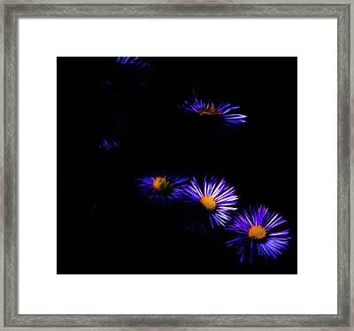 Natural Fireworks Framed Print