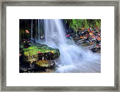 Framed Print featuring the photograph Natural Flowing Water by Frozen in Time Fine Art Photography