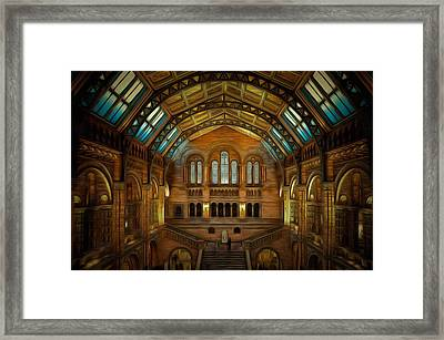 Natural History Museum London Art Painting Framed Print by Wall Art Prints
