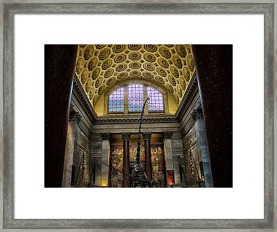 Natural History Museum Nyc Framed Print by Martin Newman