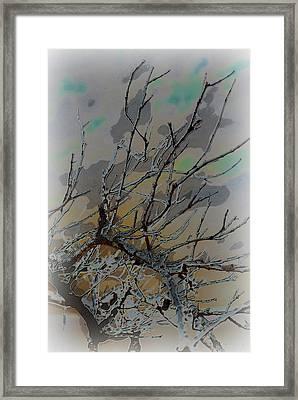 Natural Inversion - 2 Framed Print