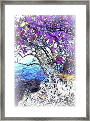 Natural Inversion 6 Framed Print