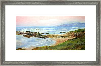 Natural Jetti Framed Print by Max Mckenzie
