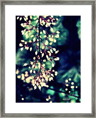 Natural Lace 2 Framed Print by Sarah Loft