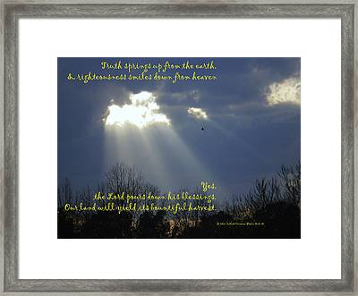 Natural Lamb Cloud Nlt Framed Print