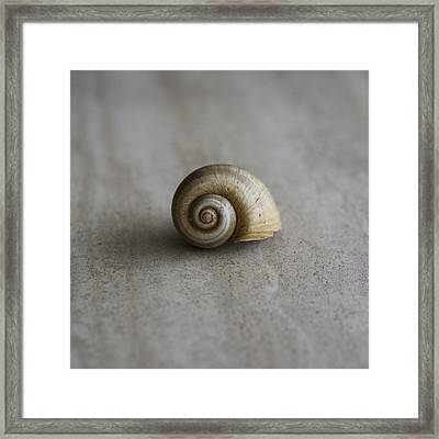 Natural Framed Print by Laura Fasulo