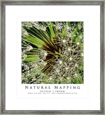 Natural Mapping Framed Print by Steven Tryon
