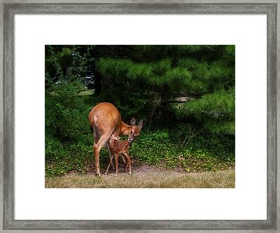 Natural Mom Framed Print
