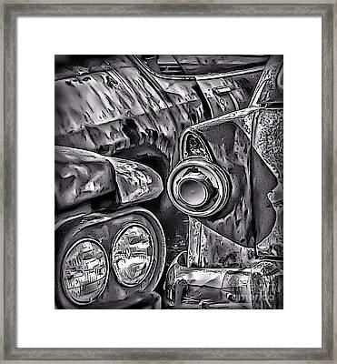 Natural Montage Framed Print