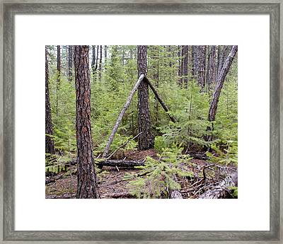 Natural Peace In The Woods Framed Print by Ben Upham III