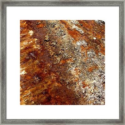 Natural Process Framed Print by Dennis Velco