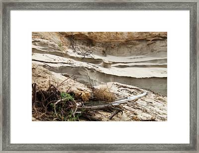 Natural Sand Castles Framed Print by Cathy  Beharriell