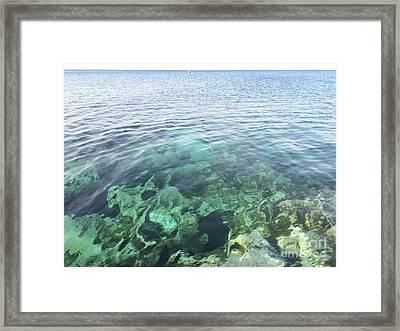 Natural Sea Aquarium Cyprus Framed Print by Clay Cofer