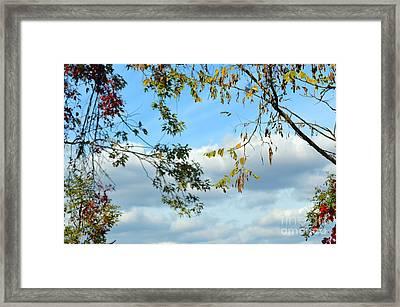 Natural Spirit #4 - Nature Art Framed Print by Robyn King