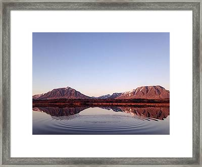Natural Symmetry Framed Print by Happy Home Artistry