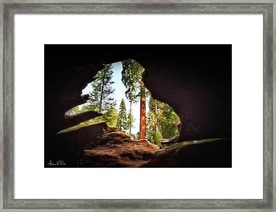 Natural Window Framed Print