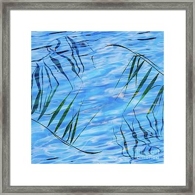 Natural Yin-yang Framed Print