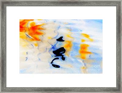 Naturaleza Framed Print by Fredy Holzer