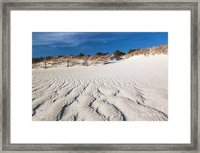 Framed Print featuring the photograph Naturally Beautiful by Michelle Wiarda
