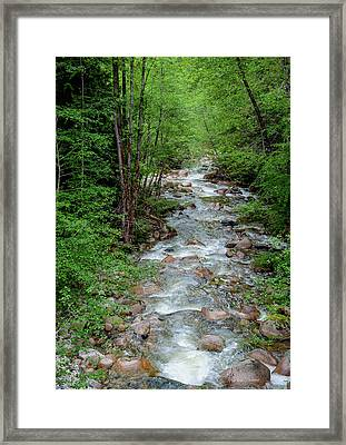 Naturally Pure Stream Backroad Discovery Framed Print