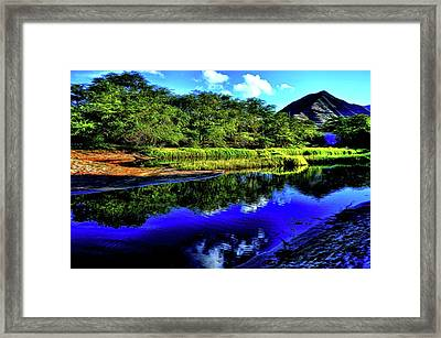 Nature 61 Version 2 Framed Print