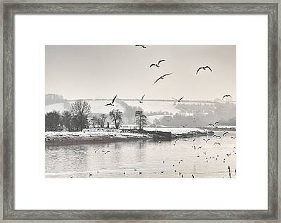Nature Framed Print by Abeer Hassan