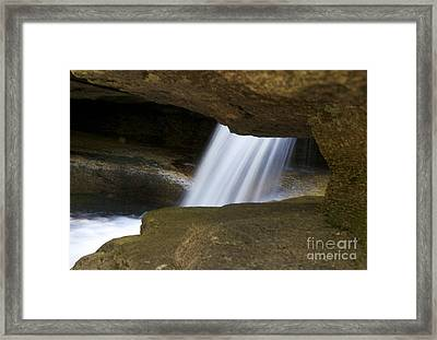 Nature Abstract Art Framed Print