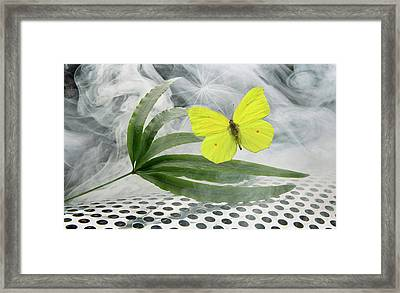 Nature And Environment Framed Print