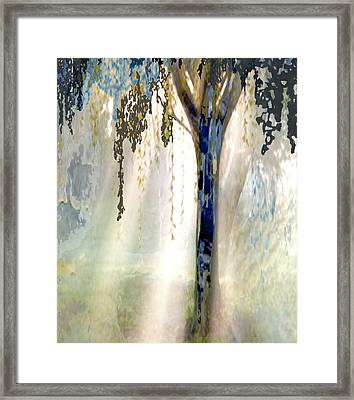 Nature And Tree Connected  Framed Print