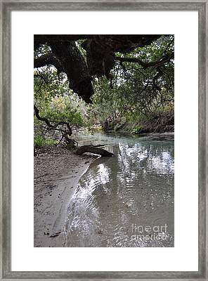Nature At Its Best. Framed Print
