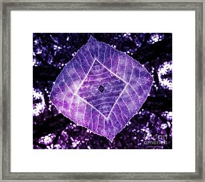 Nature Awakened Framed Print by Sandra Gallegos