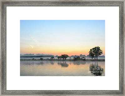 Nature Awakenings Framed Print by Genevieve Vallee