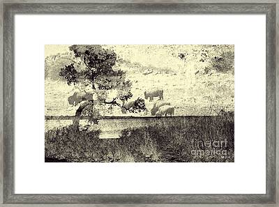 Nature Collage Framed Print by Mickey Harkins