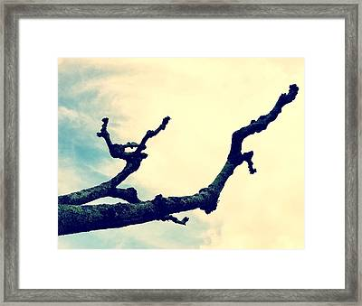 Nature Framed Print by Contemporary Art