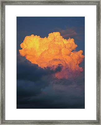 Nature Explotion Framed Print