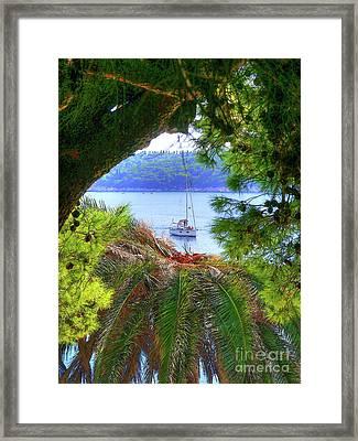Nature Framed Boat Framed Print