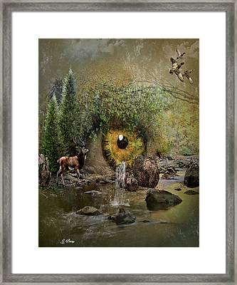 Nature Has No Time Framed Print