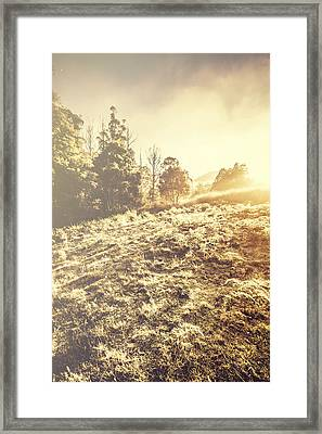 Nature In A Frosted Winter Scene Framed Print by Jorgo Photography - Wall Art Gallery