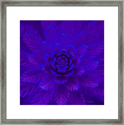 Nature In Blue Framed Print by Stacey Chiew