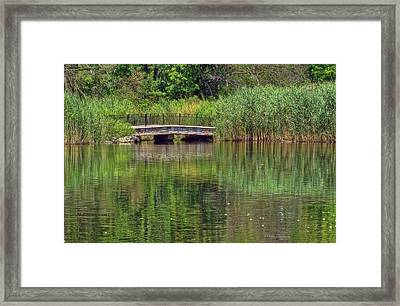 Nature In Green Framed Print