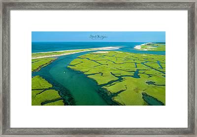 Nature Kayaking Framed Print