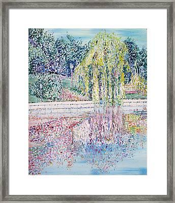 Nature Mirrored Framed Print by Fabrizio Cassetta
