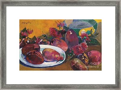 Nature Morte Aux Mangos Framed Print