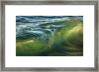 Framed Print featuring the photograph Nature Never Ceases To Amaze by Peter Thoeny