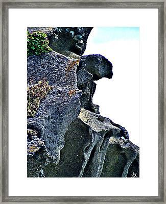 Nature Oceanside Sculpture Framed Print