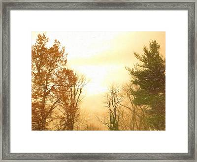 Nature Of The Earth Framed Print by Debra Lynch