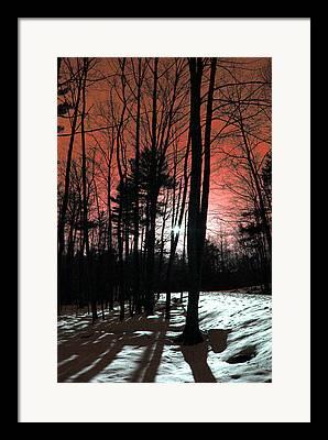 Beauty In Nature Digital Art Framed Prints