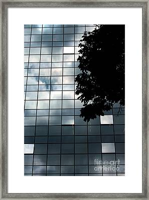 Nature On Glass Framed Print