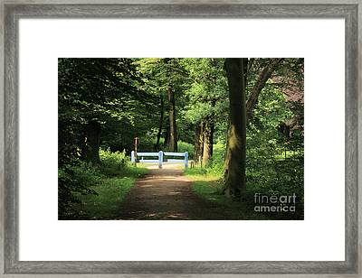 Nature Reserve Netherlands  Framed Print